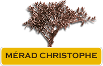MÉRAD CHRISTOPHE